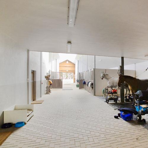Project: Noorden - Afwerking: Glad beton geverfd na montage